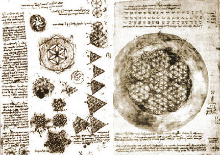 Leonardo Da Vinci Flower of Life