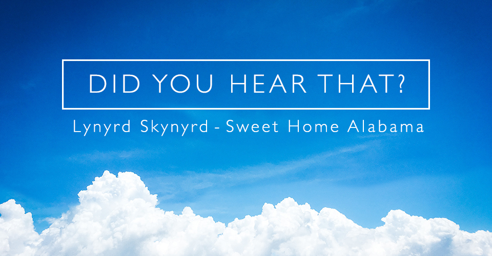 Did You Hear That? - Lynyrd Skynyrd - Sweet Home Alabama